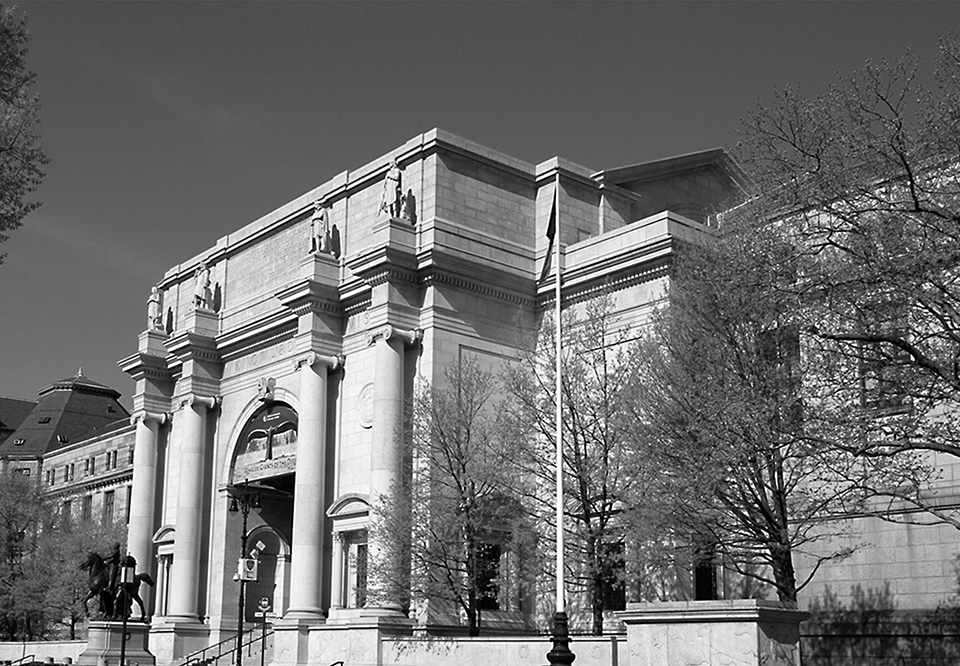 American Museum_of_Natural_History_10w_Grayscale_96dpi